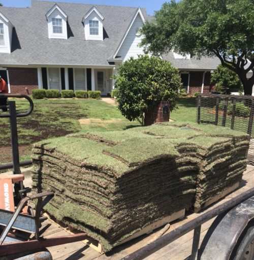 Sodding a portion of front yard