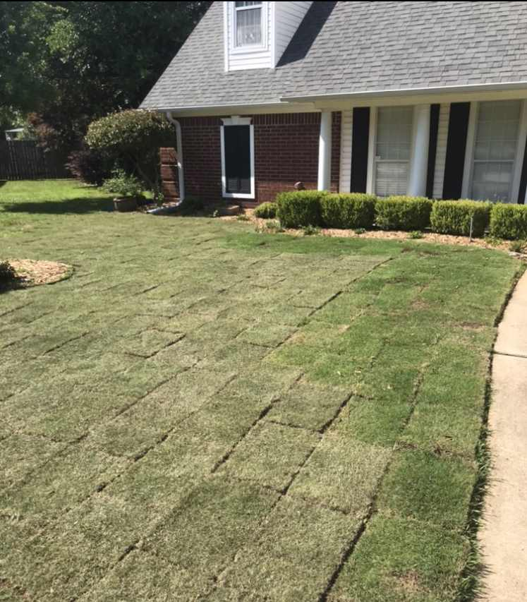 Finished Sodding a portion of front yard by HIS Way Services, Texarkana
