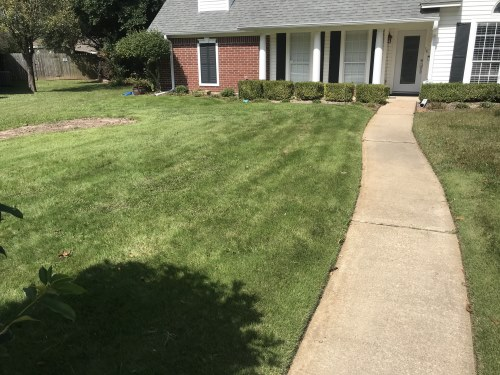 Sod merged into rest of front yard and ready for normal maintenance by HIS Way Services, Texarkana